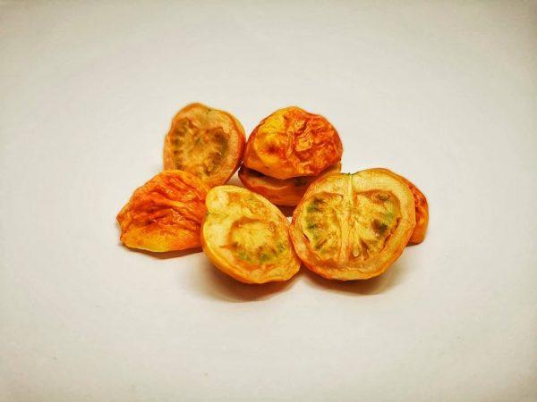 paradižnik